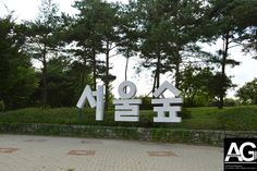 Seoul Forest - Green Space in a City