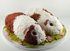 Guinea Pig Cake by SifBeth