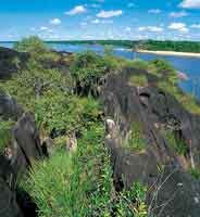 Bloque de roca granítica del escudo Guayanés, cubierta por material xerófilo.
