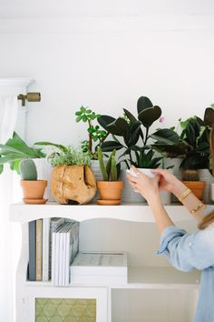 I love this shelf of potted plants!  See more at http://adoseofsimple.com/2014/06/18/decorating-with-plants/