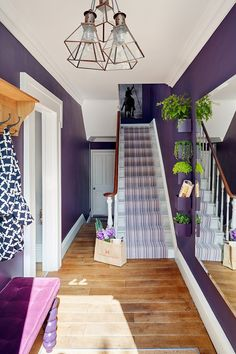 violet wall decor