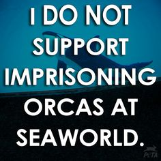 Sea the movie Blackfish...