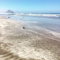 Yeah... I wAs at morro strand past santa barbara but below SF