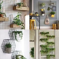 Adding plants to your bathroom, creating a living wall be it live or faux Apartment Balcony Decorating, Apartment Design, Apartment Living, Home Vegetable Garden, Plant Decor, Home Projects, Sweet Home, Bedroom Decor, Decoration