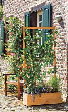 Sichtschutz Garten A privacy screen blocks prying eyes. Unfortunately, the privacy solutions offered by the hardware store are generally anything but beautiful Diy Garden Bed, Garden Cottage, Diy Garden Projects, Raised Garden Beds, Garden Art, Garden Design, Garden Screening, Balcony Plants, The Balcony