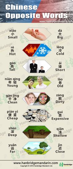 Chinese vocabulary of opposite words.