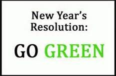 """""""Go Green & Organic For Your New Year's Resolution!""""   Make a New Year's Resolution for 2013 that you will make a safe ahd healthier planet -- Stop using Pesticides    READ MORE @ www.organic4greenlivings.com"""