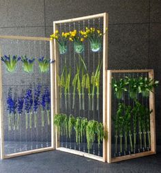 Collect as many test tubes as possible and build a frame so that you can string two ends and hang them all to make this beautiful installation at home. Gonna try this at home and collect different plants :) Test Tube Crafts, Sustainability Projects, Earthy Decor, Build A Frame, Different Plants, Recycled Glass, Diy Projects To Try, Test Tubes, Bulb