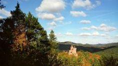 Wein, Wald und Burgen - die Geschichte der Pfalz - Standbild