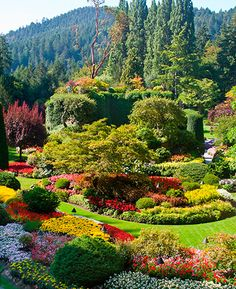 Butchart Gardens, British Columbia ~ went with Mom, gorgeous, was a beautiful wonderful trip. BC is just beautiful.
