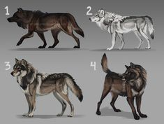 Wow WOLF ADOPTS, auction: CLOSED by KFCemployee on DeviantArt