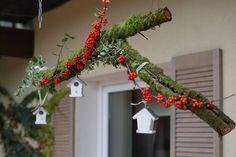 dekoracja,taras,ogród