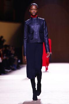 Hermes Ready To Wear Fall Winter 2015 Paris