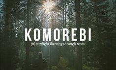 komorebi [japanese]