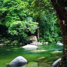 Mossman Gorge, Queensland, Australia #thisisqueensland