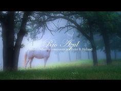 Música Celta de Flauta, Arpa y Piano: Música Relajante, Música para Meditar y Relajarse ☼7 - YouTube