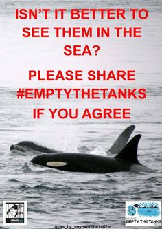 #EMPTYTHETANKS  #BLACKFISH  #SAVETHEANIMALS   People This Isn't Right.