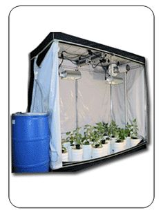Love to do indoor gardening? Hydroponic Grow Tents will help you maintain your garden with & 89 Best Grow Tents~ Indoor Hydroponics Systems images | Growing ...