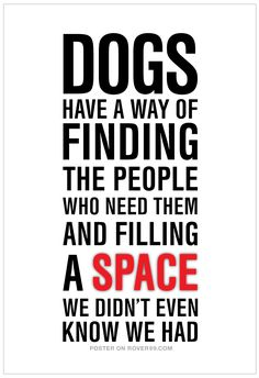 Dogs Have A Way Of Finding The People Who Need Them And Filling A Space We Didnt Even Know We Had - Dogs Quote