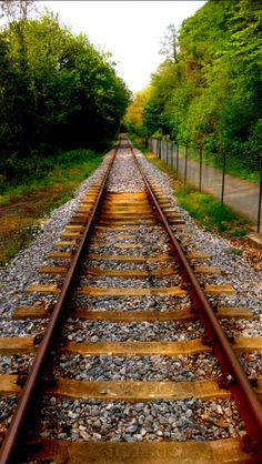 Looking down the track source Flickr.com Amazing Photography, Nature Photography, Old Steam Train, Studio Background Images, Long Way Home, Abandoned Train, Picsart Background, Holland, Train Tracks