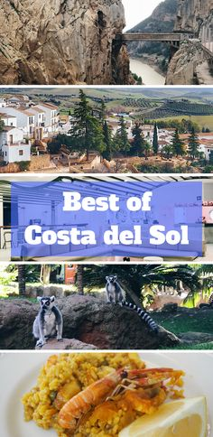 Costa del Sol guide: best things to do in and around Costa del Sol, Spain. From foodie finds, beautiful architecture, awe-inspiring walking trails to instagrammable white cities.