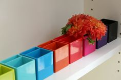 colorful pen holders!