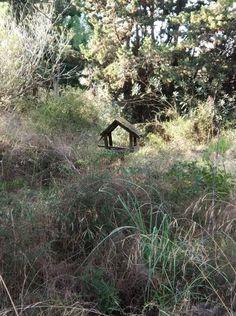 Casa a reformar en la Reserva Natural Remolar Filipinas-Viladecans-Barcelona