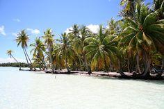 Tahiti Motu Picnic (c) veroyama / Flickr