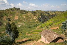 Wildlife Nature, Ethiopia, City Photo, Landscapes, African, Photography, Travel, Into The Wild, Fotografie