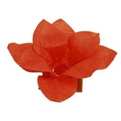 If you have a wedding on the water, have all the guests send off floating lotus wish lanterns. A beautiful sight to see!