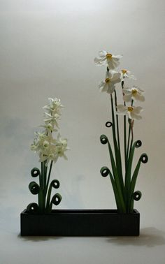 Manipulated narcissus leaves with narcissus blooms 639x1024 365 Days of Ikebana Day 250