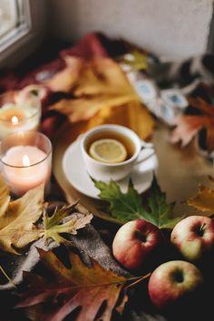 Autumn mood Autumn Cozy, Autumn Trees, Autumn Leaves, Autumn Aesthetic, Fall Diy, Flowers Nature, Autumn Inspiration, Fall Pumpkins, Tea Time