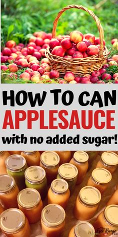 Canning Recipes: Learn how to make you own appleasuce with no added sugar. Includes canning directions for how to can applesauce at home Canning Recipes: Learn how to Home Canning Recipes, Canning Tips, Jam Recipes, Cooker Recipes, Canning Soup, Pressure Canning Recipes, Easy Canning, Jelly Recipes, Shrimp Recipes