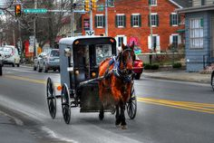 Amish Buggy; Lancaster County, PA