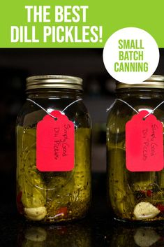 The Best Dill Pickles - have you tried small batch canning? This water bath canning recipe makes about 3 quarts of the best dill pickles you have ever eaten! Garlicky with a little heat. Small Batch Pickle Recipe, Best Dill Pickle Recipe, Canning Tomatoes Water Bath, Hot Water Bath Canning, Canning Dill Pickles, Canning Peaches, Canning Recipes, Spicy Recipes, Appetizer Recipes