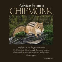 Advice from a Chipmunk T-Shirt Son Quotes, Advice Quotes, Prayer Quotes, Quotable Quotes, Cute Quotes, Earth Sun And Moon, Sun Moon, Purple Color Meaning, Definition Quotes