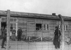 Kamp Vught:  Holzbaracken auf dem ehemaligen SS-Konzentrationslager...