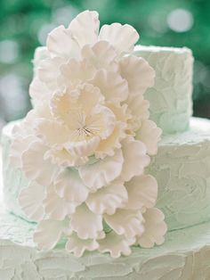 Perfect #mint #wedding #cake | Lake Lanier Islands Wedding from Amy Arrington Photography  Read more - http://www.stylemepretty.com/georgia-weddings/2013/08/14/lake-lanier-islands-wedding-from-amy-arrington-photography/