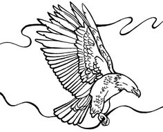 eagle picture to color  Birds Eagles for Preschool  Pinterest