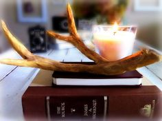 WOOD - Make a branch look like an antler for a display piece