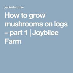 How to grow mushrooms on logs – part 1 | Joybilee Farm