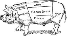 sea pig diagram beef pig diagram