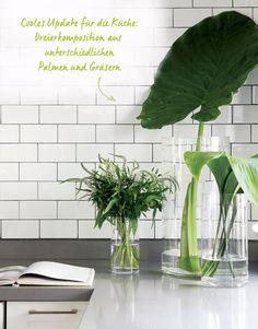 Pflanzentrend bei Westwing: Palmenblätter