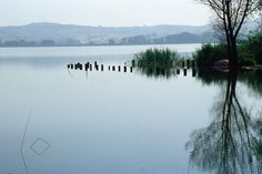 Lago di Chiusi (Robin Chapman Lonely Planet Photographer © Copyright Lonely Planet Images 2011)