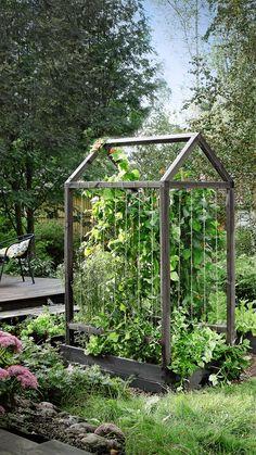 Tee itse köynnöstuki ja päästä köynnöskasvit loistamaan noustessaan tyylikästä tukea pitkin. Asenna köynnöstuki kasvatuslaatikon sisälle. Cottage, Backyard, Outdoors, Gardening, Allotment, Patio, Cottages, Lawn And Garden, Backyards
