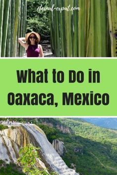 things to do in Oaxaca - what to do in Oaxaca, Mexico!