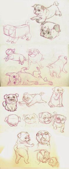 Pug studies   by Lucía Castez  http://luciacastez.tumblr.com/