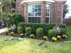 Front Yard Landscaping Ideas In Texas The Traylor Parks Blog Front Yard Landscaping