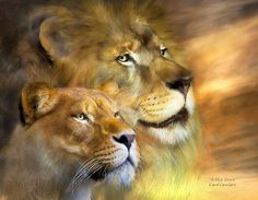 Browse through images in Carol Cavalaris' Big Cats - Spirit Of The Wild collection. Through the eyes of a cat we learn to see the extraordinary. A collection of artwork paying tribute to the beauty and power of big cats, including lions,. Big Cats Art, Cat Art, Female Lion, Wild Lion, Lion And Lioness, Art Calendar, Calendar 2014, Lion Art, Cross Paintings