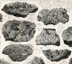 1851 Antique Steel Engraving of Rocks and Crystals Relic Hunter, Print Paper, Vintage Prints, Graphic Prints, Infographics, Mirrors, Screen Printing, Monochrome, Illustration Art